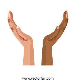 interracial hands human isolated icon
