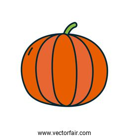 pumpkin icon, line and fill style