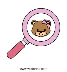 face of cute teddy bear female in magnifying glass
