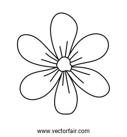 cute flower nature isolated icon