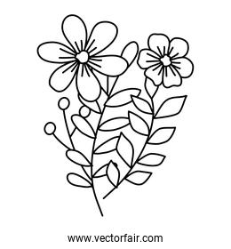 cute flowers with branches and leafs
