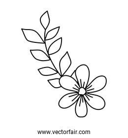 cute flower with branch and leafs