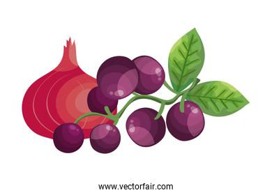 fresh grapes with onion purple isolated icon