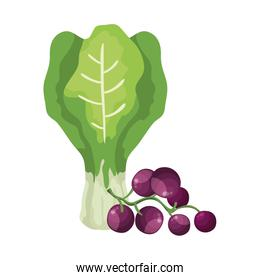 fresh grapes with chard vegetables isolated icon