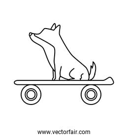 cute dog animal in skateboard isolated icon