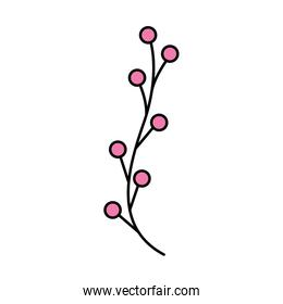 branch with seeds pink color isolated icon