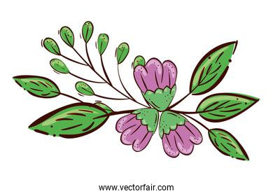 cute flowers purple with branches and leafs isolated icon