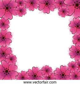 frame of cute flowers pink color isolated icon