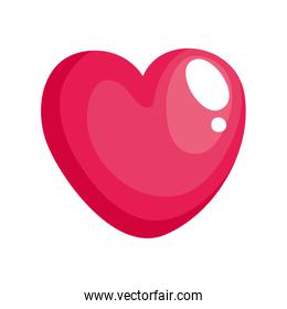 cute heart pink color isolated icon