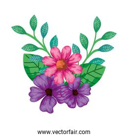 cute flowers pink and purple color with leafs