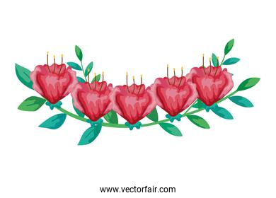 cute flowers red with branch and leafs isolated icon