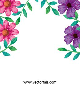 frame of flowers pink and purple color with leafs
