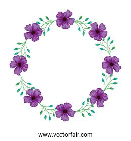 frame circular of flowers purple with branches and leafs