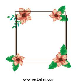 square frame of cute flowers with branches and leafs