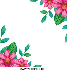 frame of flowers pink color with leafs natural