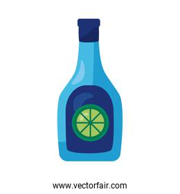 tequila bottle mexican detaild style icon over white