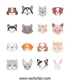 set of heads of cats and dogs on white background