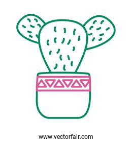 cactus mexican plant line style icon