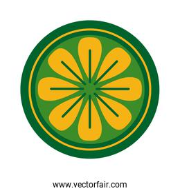 seal of flower flat style icon