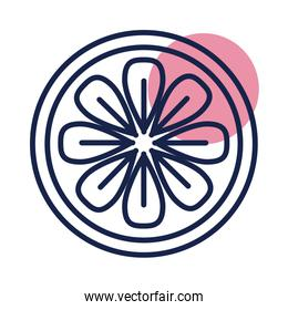seal of flower block line  style icon