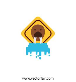 Sea lion banner over melted ice vector design