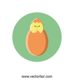 egg with cute little chicken, block style icon
