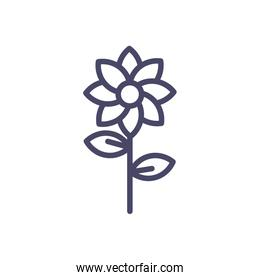 beautiful flower with leaves icon, line style design
