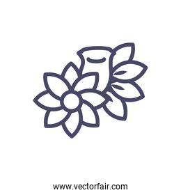 beautiful flower and roses icon, line style design