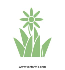 beautiful flower and grass icon, silhouette style