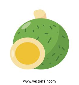 exotic vegetables icon, flat detail style