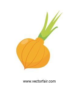 onion vegetables icon, flat detail style