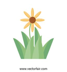 beautiful flower and grass icon, flat detail style