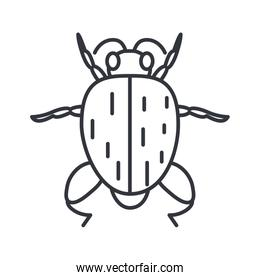 bug insect icon, line detail style