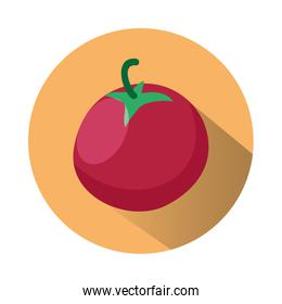fresh tomato vegetable healthy food icon