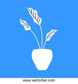house plant in ceramic pot over blue background