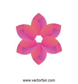flower gradient style icon vector design