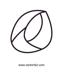 Abstract oval shape line style icon vector design