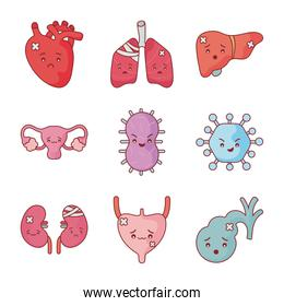 Human organs and virus flat style icon set vector design