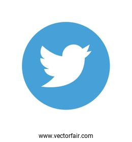 twitter flat style icon vector design