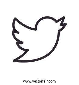 twitter line style icon vector design
