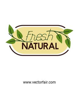 natural fresh lettering flat style icon