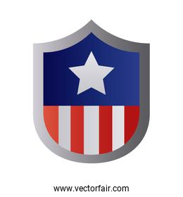 shield with usa flag degraded style