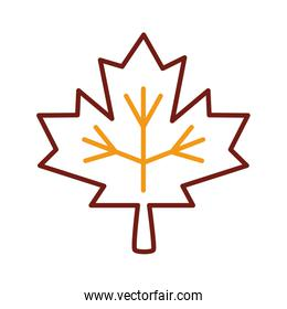 maple leaf canadian line style