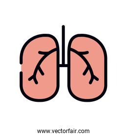 medicine concept, lungs icon, line and fill style