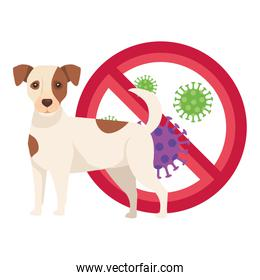 dog with particles covid 19 in forbidden signal