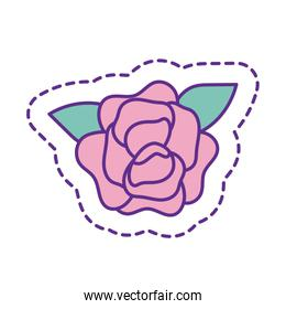 Cute rose flower patch line and fill style icon vector design