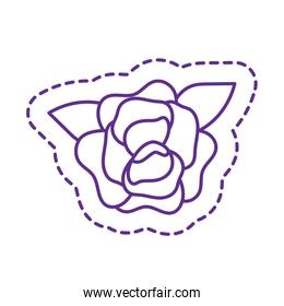 Cute rose flower patch line style icon vector design