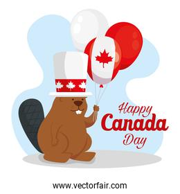 happy canada day with beaver and balloons helium
