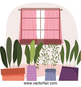 potted plants and window decoration interior home design