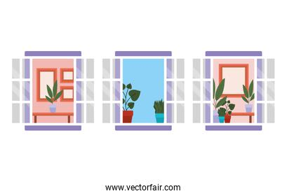windows with interior view of plants and frames vector design